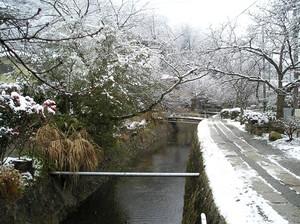 雪の哲学の道P1010135.JPG